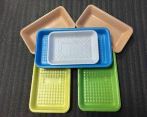 Cheap Food Grade Biodegradable Disposable Plastic Food Container with Meat Absorbent Pad pictures & photos