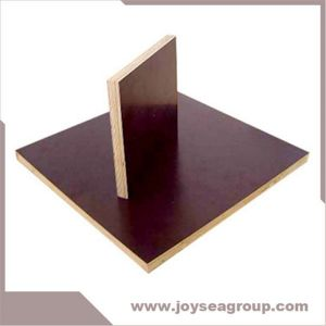 Shuttering Plywood for Construction pictures & photos