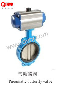 Pneumatic Valve pictures & photos