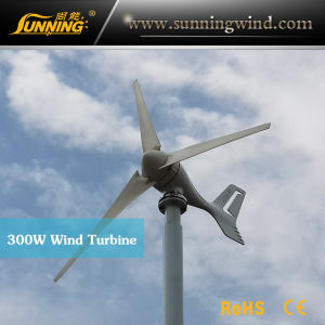 Domestic Wind Turbine, 400W Domestic Wind Turbine (MINI-400W 12V) pictures & photos