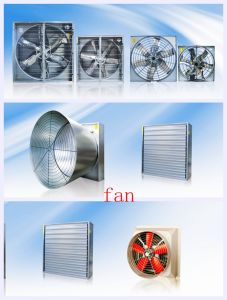 "50"" Fan in Poultry Farm House From Super Herdsman pictures & photos"