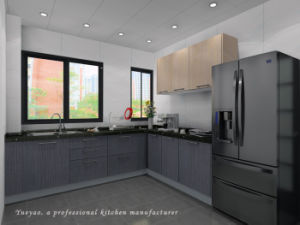 High Glossy Lacquer Kitchen Cabinet with Kitchen Furniture (M018)