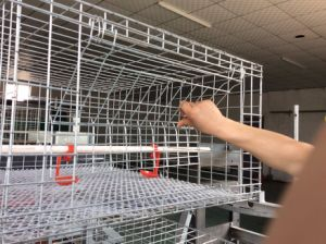 Lu Xing Farming Equipment Co., Ltd. - Chicken Cage pictures & photos