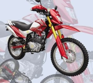 Dirt Bike (SP200GY-10N)