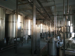 Industrial 5000b/H Drinking Yogurt Bottling Plant pictures & photos