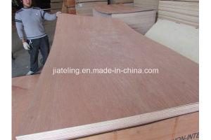 WBP Glue Bb/Cc Grade Bintangor Plywood pictures & photos