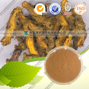 High Quality 100% Natural Chelidonium Majus Extract--Coptisine pictures & photos