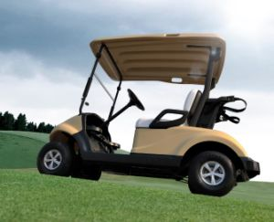 Best Quality for 2 Passenger Electric Golf Cart Made by Dongfeng Motor on Sale pictures & photos