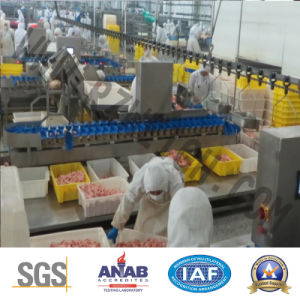 Fish Poutry Food Grading Machine 1000g Weighing Machine pictures & photos