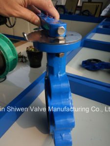 Ductile Iron Lug Type Butterfly Valve with EPDM Seat pictures & photos