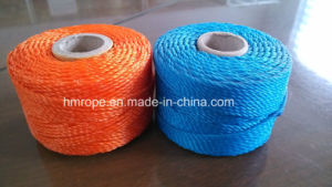 PE 3 Strands Twisted Twine (PP monofilament twisted twine) pictures & photos