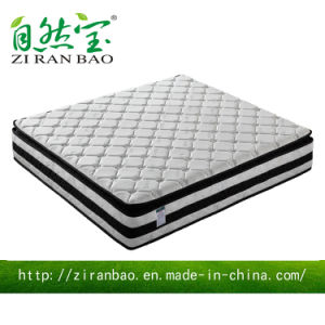 Hight Quality Knitted Fabric Latex Organic Pocket Spring Mattress (ZRB-812)