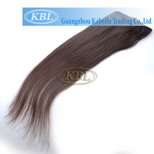 360 Natural Grey Color Clip in Hair Extension pictures & photos