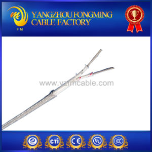 2 Cores High Quality K Type Thermocouple Cable Wire pictures & photos
