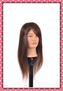 Hot 100% Human Hair Mannequin Head 20inches for Beauty School pictures & photos