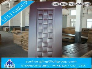 Melamine Molded HDF Door Skin pictures & photos