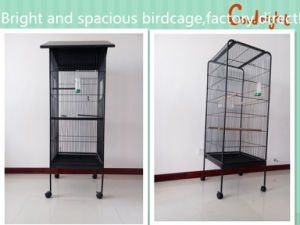 Factory Direct, Bright and Spacious Birdcage, pictures & photos