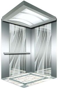 Italy Professional Home Hydraulic Villa Elevator (RLS-124) pictures & photos