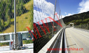 Stainless Steel Cable Mesh for Bridge pictures & photos