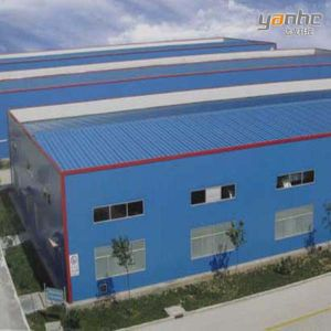 High Quality Light Steel Structure Building (S-S 135)