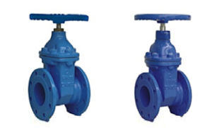 Non-Rising Stem Resilient Soft Seated Gate Valve DIN3352-F4 pictures & photos