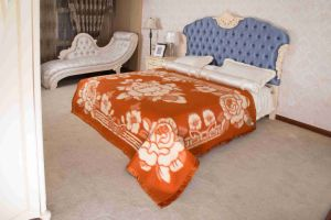 Woven Woolen Pure Wool Blanket (NMQ-WT012) pictures & photos