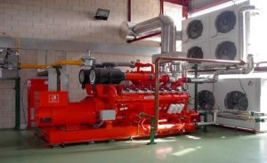 Green Energy Biofuel Biogas Generator Set pictures & photos