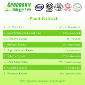 Greensky White Mulberry Extract with Anthocyanins pictures & photos