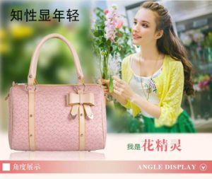 Fashionable Lady Handbag (kll1205-12)