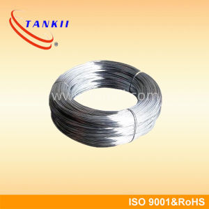 Nichrome Rod/Nichrome Wire (NiCr 80/20) pictures & photos