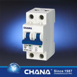 6ka/10ka 2p Mini Circuit Breaker with TUV Approval pictures & photos