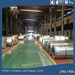 PPGI Coil Prepainted Galvanized Steel Coil pictures & photos
