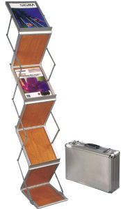 2015 Indooe Literature Display Stand (DW-FTS-W4) pictures & photos