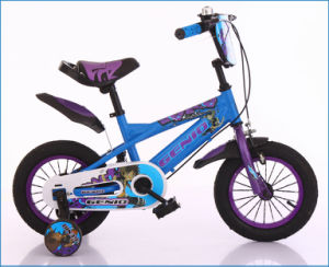 Bright Color Balance Kids Bikes (NB-006) pictures & photos