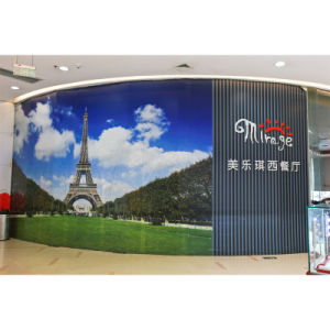 Large Format Full Color Printing PVC Flex Wall Banner for Advertiding pictures & photos
