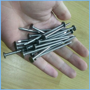 Polishing Common Nail, Common Wire Nail pictures & photos
