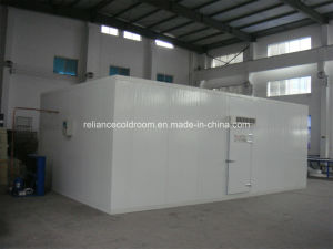 High Density Polyurethane Cold Room for Meat and Fish pictures & photos