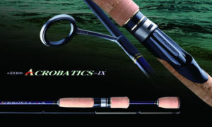 Fishing Rod ATS Spinning Rod Fishing Rod Carbon Rod pictures & photos