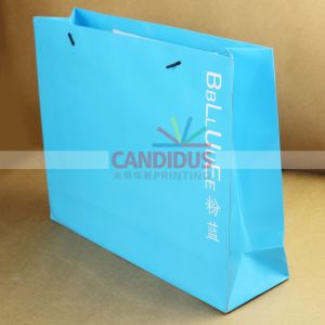 Cost-Effective Shpping Bag Paper Bag pictures & photos