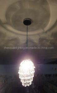 Acrylic Ceiling Lamp (CY-22020)