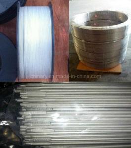 Titanium and Titanium Alloy Wire pictures & photos