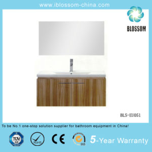 Household Wall-Mounted Bathroom Cabinet (BLS-EU051) pictures & photos