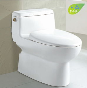 Siphonic One-Piece Water Saving Sanitary Ware CE-T227 pictures & photos