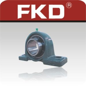 Fkd/Fe/Hhb 2 Hole Pillow Block Bearing/Bearing Units (UCP206) pictures & photos