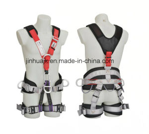 Fullbody Safety Harness (JE148141) pictures & photos
