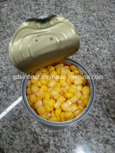 Good Quality Canned Sweet Corn Kernels pictures & photos