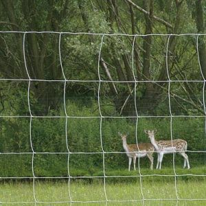 Deer Exclusion Fence pictures & photos
