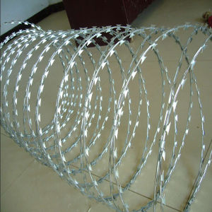 High Quality Galvanized Razor Barbed Wire for Fence pictures & photos