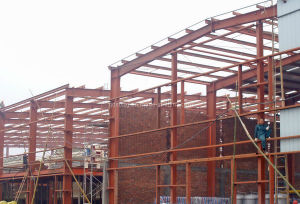Light Steel Structure /Light Steel Strucure Building / Mild Steel