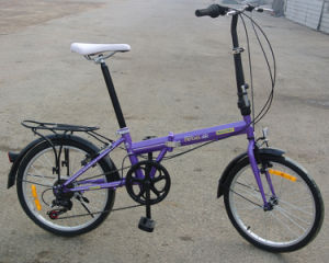 "Brazil Popular Promotion Bicycle 20"" Foldable Bike (FP-KDB-D029) pictures & photos"